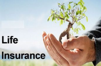 top life insurance plans india